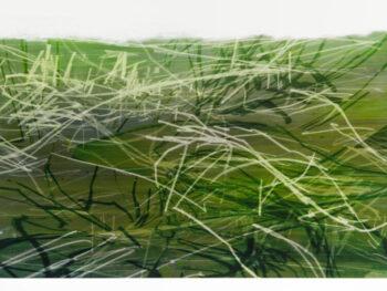 Tina Barahanos - Notations Landscape No.5