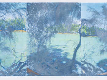 Susan Baran - Troubled WatersDarlingRiver