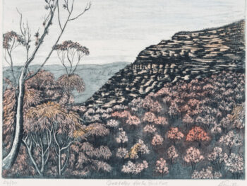 Anne Smith - Grose Valley After the Bush Fires