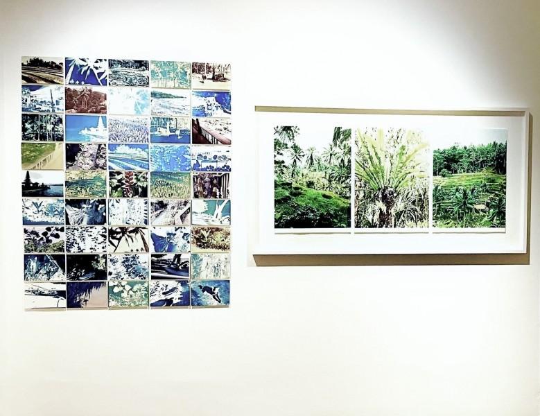 Susan Baran, Ubud Bali, 2020, photopolymer intaglio, hand coloured, cyanotype, main image 57 x 123cm, series of 'postcards'